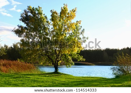 Picturesque autumn landscape with lake - stock photo