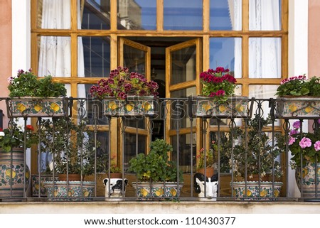 Picturesque balcony with many vases of flowers - stock photo