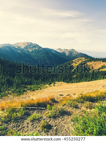 Picturesque of a landscape on top of a mountain. Taken from Hurricane Ridge Visitor Center, Olympic National Park, Washington State, USA. - stock photo