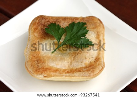 Pie on white plate with parsley leaf - stock photo