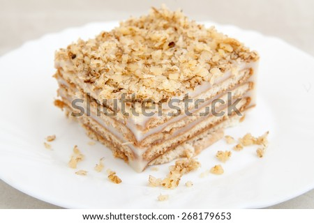 Piece of biscuit cake on white plate   - stock photo