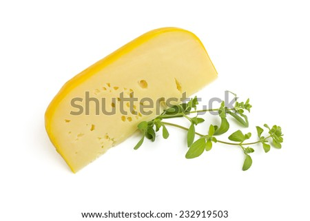 piece of cheese - stock photo