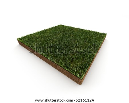 Piece of grass isolated on white background. High quality 3d render. - stock photo