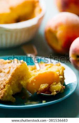 piece of homemade peaches  pie   on a plate. style vintage. selective focus. - stock photo