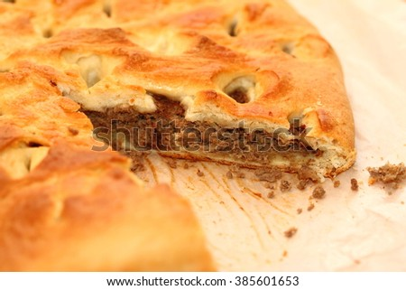 piece of meat pie from yeast dough and beef - stock photo