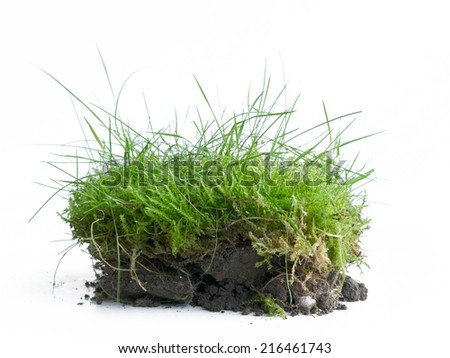 Piece of turf with topsoil in the spring when the garden work begins, isolated against a white background - stock photo