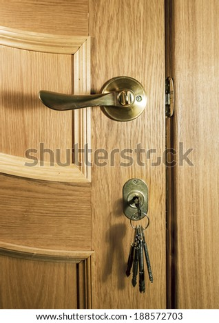 Piece of wood of an oak door with a handle and a bunch of keys in the lock - stock photo