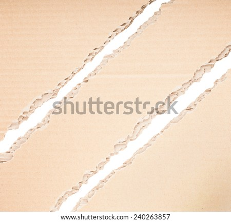Pieces of a torn brown corrugated cardboard  - stock photo