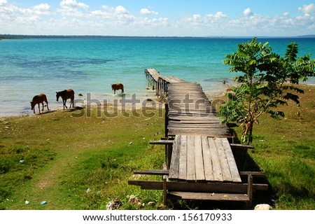 Pier on a Blue Lake with Horses in Guatemala - stock photo