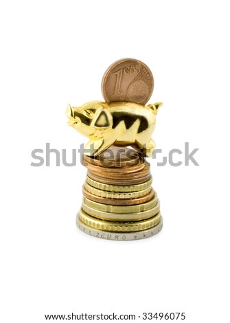 pig on stack coin isolated on white background - stock photo