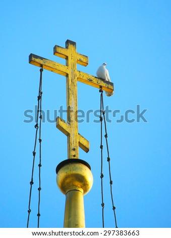 Pigeon sitting on the church cross - stock photo