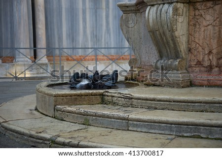 Pigeons in a rain puddle at the well in the square of the Basilica of St. Mark - stock photo