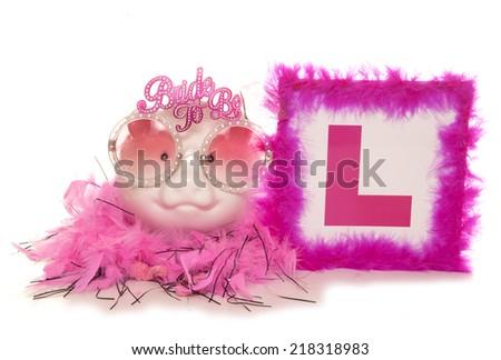 Piggy bank hen party studio cutout - stock photo