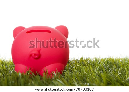 Piggy bank on grass, rear view. - stock photo