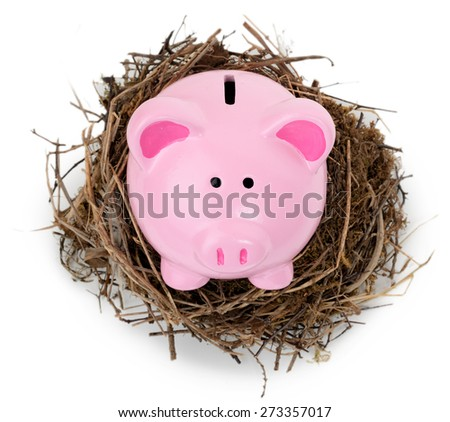 piggy bank sat in a nest isolated on white high angle shot - stock photo