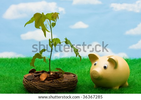 Piggy bank with a bowl of pennies that has a tree growing out of it on a sky background, growth in your savings - stock photo