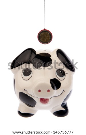 Piggy bank with black and white cow spots, looking upwards to a Euro coin and isolated in white background from the front side - stock photo