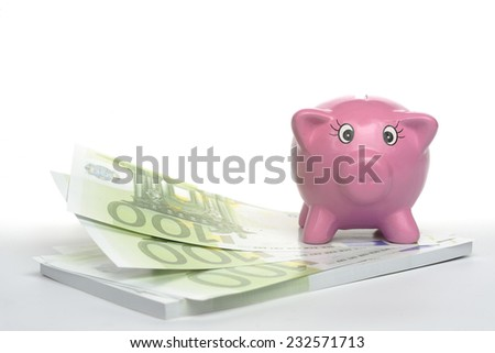 piggy bank with Euro note. - stock photo