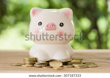 piggy bank with golden coins in nature background. account concept,business concept,finance concept, savings concept - stock photo