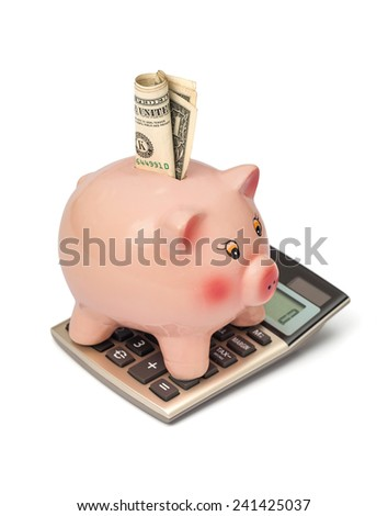 piggy bank with money on calculator - stock photo