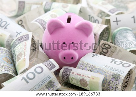 Piggy bank with polish money - stock photo