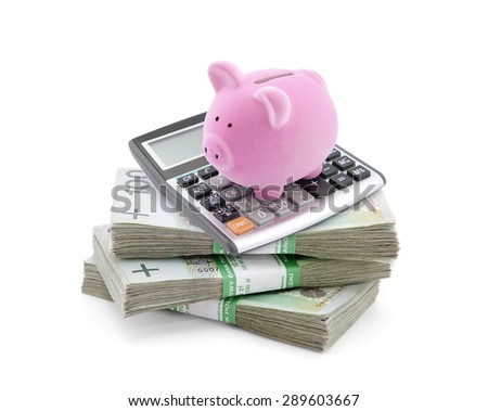 Piggy bank with polish money and calculator  - stock photo
