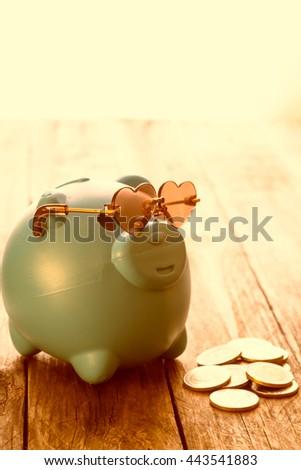 piggy money box with golden coins - stock photo