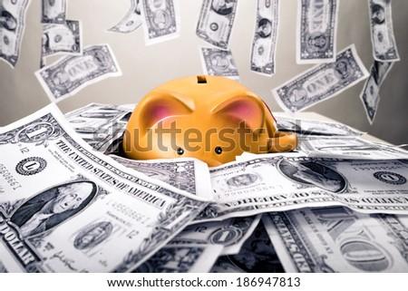 Piggybank on dollars and money shower - stock photo