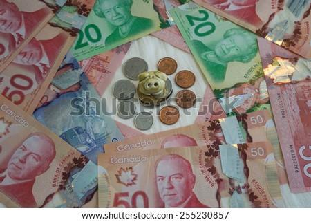 Piglet demonstrate benifit of saving - stock photo