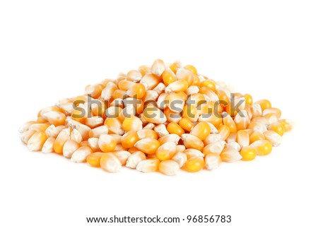 Pile dried corn isolated on white background. - stock photo