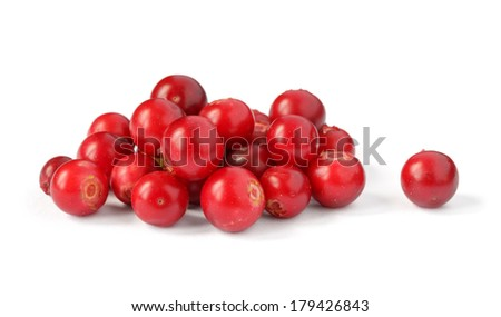 pile of bilberry over white background with shadow - stock photo