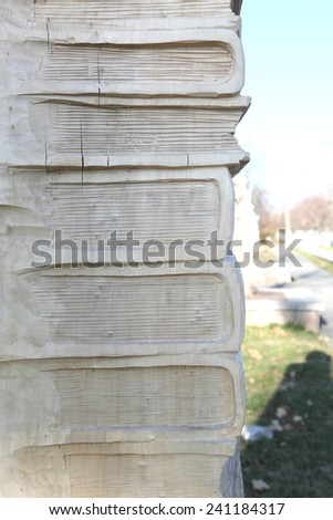 pile of books from a tree - stock photo