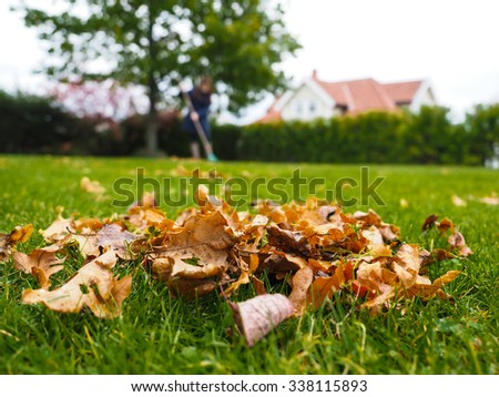 Pile of brown oak leaves at autumn over fresh green grass - stock photo