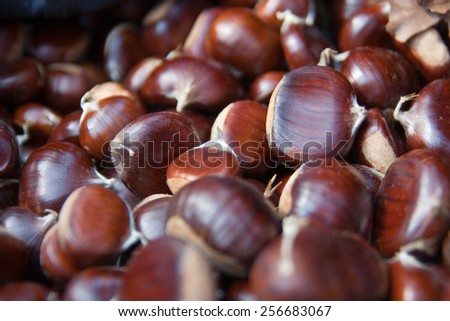 Pile of chestnut in the sack - stock photo