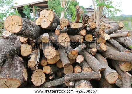 Pile of cut wood stump log - stock photo