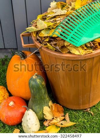 Pile of dead fall leaves dumped into plastic bin, pumpkins and fan rake resting on the bin - stock photo