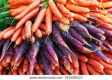 pile of different colored carrots - stock photo