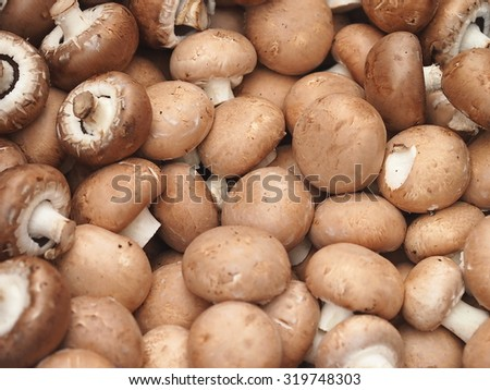 Pile of fresh mushrooms (champignon portobello) at farmers market in Prague.  - stock photo
