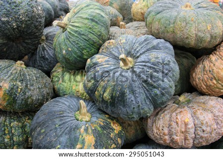Pile of Fresh Pumpkins at a market - stock photo