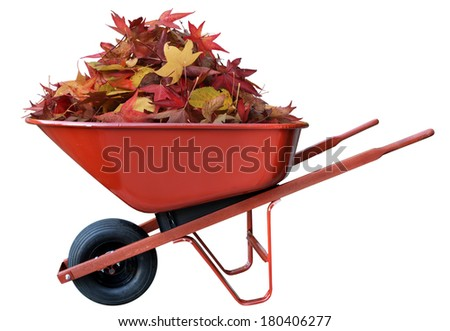 Pile of leaves in a wheel barrow - stock photo