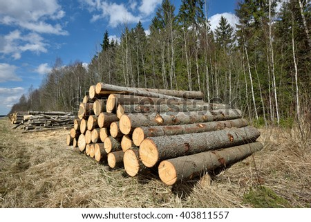 Pile of logs on meadow in forest, North Lithuania - stock photo