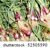 pile of onions - stock photo