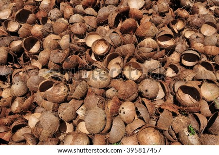 Pile of open and empty coconut shells - stock photo