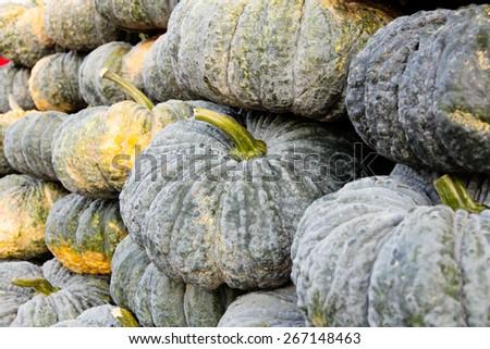 pile of pumpkin in market - stock photo