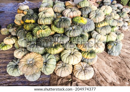 Pile of pumpkins in market  - stock photo