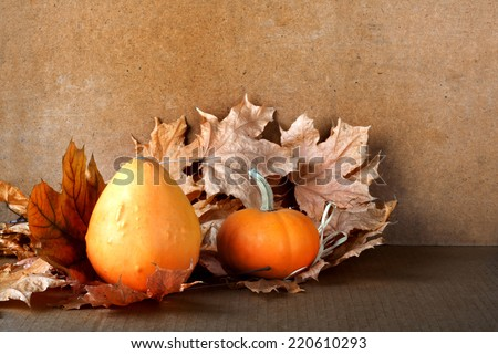 Pile of pumpkins with autumn foliage on abstract background - stock photo