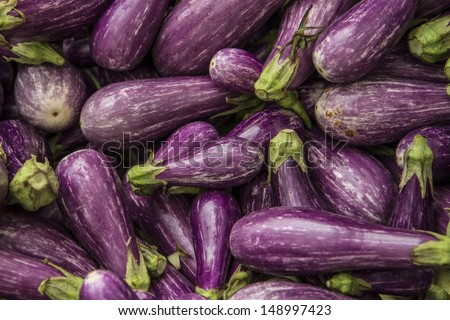 Pile of purple Fairy Tale eggplant - stock photo