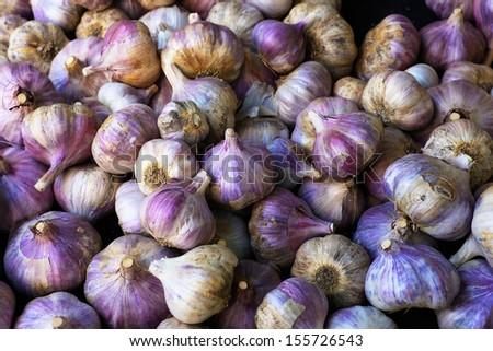 Pile of Purple Italian Garlic at the farmers market  - stock photo
