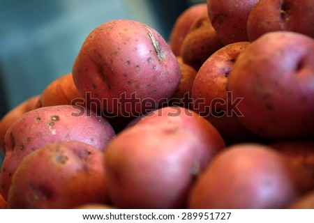 Pile of raw red new potatoes against a blue gray background. Extreme closeup on raw vegetables. - stock photo