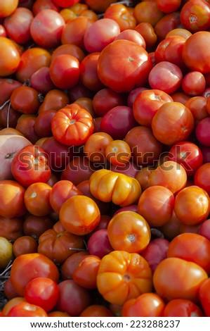 Pile of ripe tomatoes - stock photo
